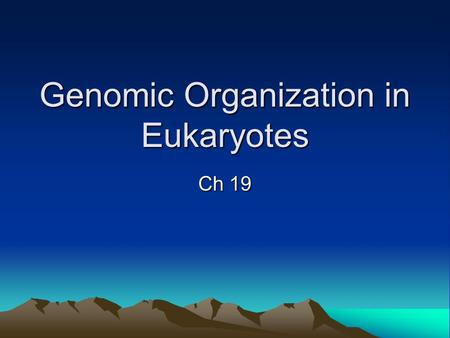 Genomic Organization in Eukaryotes Ch 19. In Prokaryotes… -DNA was circular -It is smaller that eukaryotic DNA -Less elaborately structured -And also,