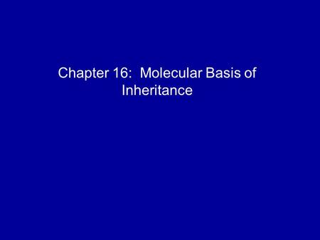 Chapter 16: Molecular Basis of Inheritance. DNA is the genetic material Early in the 20th century, the identification of the molecules of inheritance.