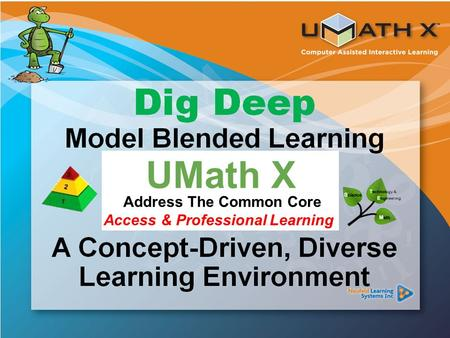 Common Core Standards UMath X Address The Common Core Access & Professional Learning.