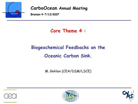 Core Theme 4 : Biogeochemical Feedbacks on the Oceanic Carbon Sink. M. Gehlen (CEA/DSM/LSCE) CarboOcean Annual Meeting Bremen 4-7/12/2007.