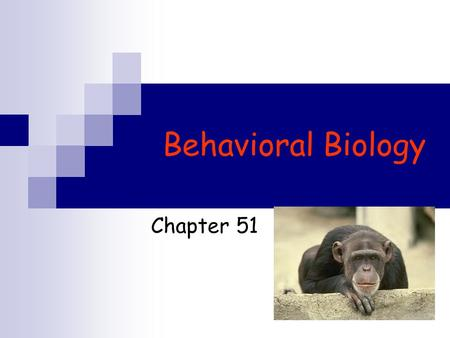 Behavioral Biology Chapter 51. Behavioral Biology Part I  What is behavior?  Innate Behavior FAP/ Sign stimulus  Learned Behavior Habituation Imprinting.