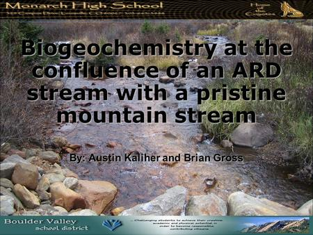 Biogeochemistry at the confluence of an ARD stream with a pristine mountain stream By: Austin Kaliher and Brian Gross.
