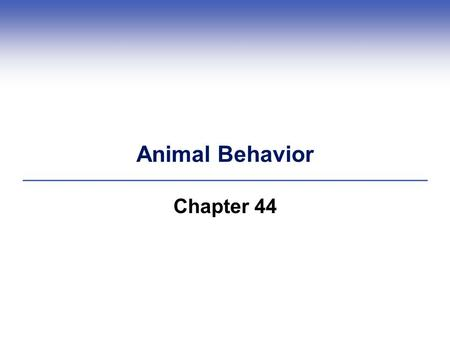 Animal Behavior Chapter 44.