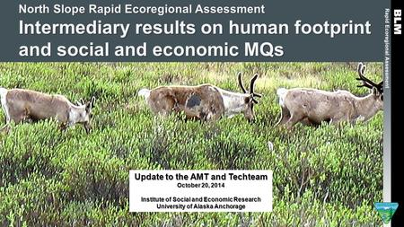 North Slope Rapid Ecoregional Assessment Intermediary results on human footprint and social and economic MQs Update to the AMT and Techteam October 20,
