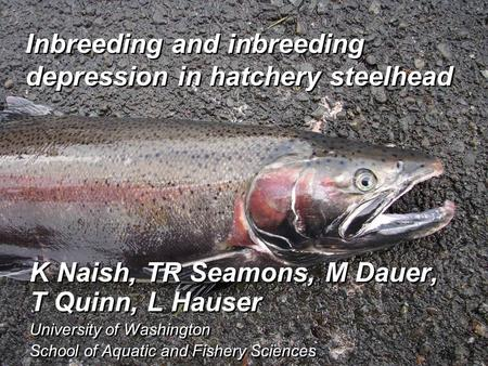 Inbreeding and inbreeding depression in hatchery steelhead K Naish, TR Seamons, M Dauer, T Quinn, L Hauser University of Washington School of Aquatic and.