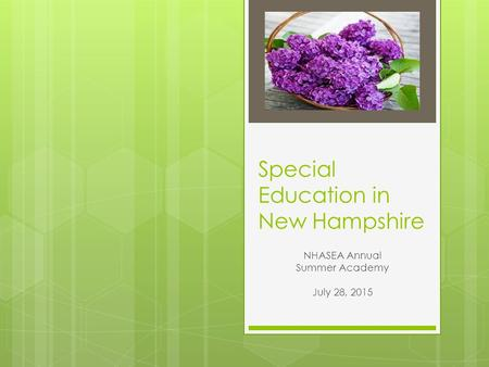 Special Education in New Hampshire NHASEA Annual Summer Academy July 28, 2015.