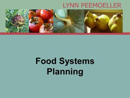 Food Systems Planning. What is a Food Systems Planner? Projects and Partners Policy: Chicago Food Policy Advisory Council Planning: Chicago Metropolitan.