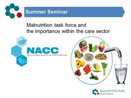 Summer Seminar Malnutrition task force and the importance within the care sector.