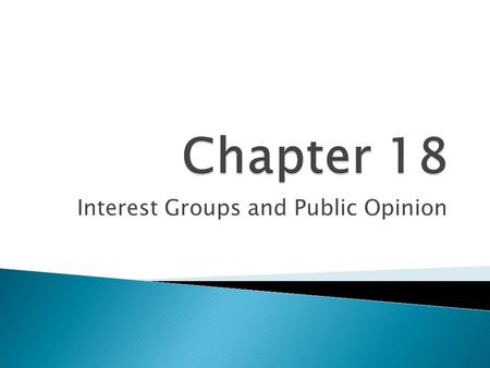 Interest Groups and Public Opinion. Interest Group Organization.