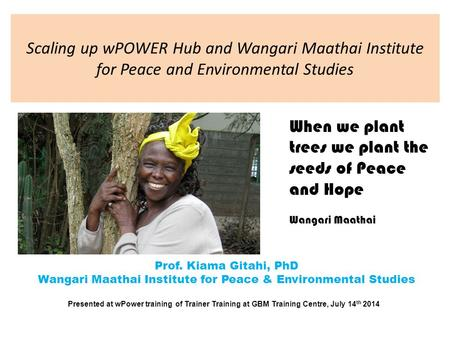 Scaling up wPOWER Hub and Wangari Maathai Institute for Peace and Environmental Studies Prof. Kiama Gitahi, PhD Wangari Maathai Institute for Peace & Environmental.