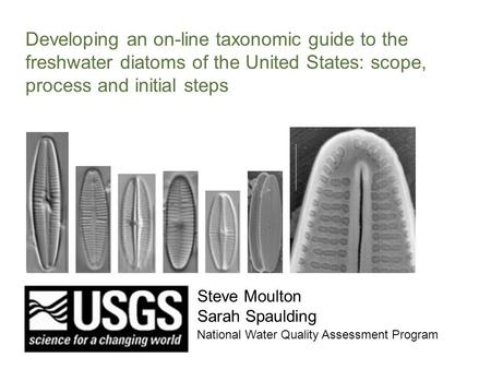 Developing an on-line taxonomic guide to the freshwater diatoms of the United States: scope, process and initial steps Steve Moulton Sarah Spaulding National.