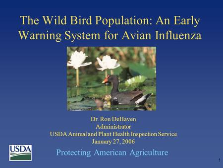 Protecting American Agriculture 1 The Wild Bird Population: An Early Warning System for Avian Influenza Dr. Ron DeHaven Administrator USDA Animal and Plant.