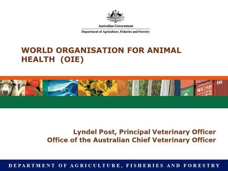 D E P A R T M E N T O F A G R I C U L T U R E, F I S H E R I E S A N D F O R E S T R Y WORLD ORGANISATION FOR ANIMAL HEALTH (OIE) Lyndel Post, Principal.