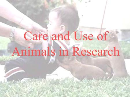 Care and Use of Animals in Research. Care and Use of Animals in Research Public Involvement  1962 – Silent Spring, by Rachel Carson  1966 – LIFE magazine.