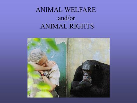 ANIMAL WELFARE and/or ANIMAL RIGHTS. TOM REGAN > Philosopher, Activist.