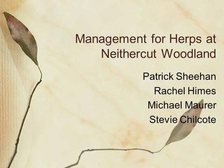 Management for Herps at Neithercut Woodland Patrick Sheehan Rachel Himes Michael Maurer Stevie Chilcote.