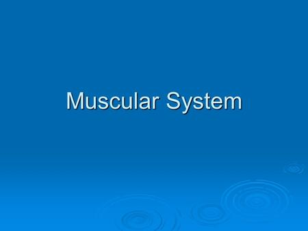 Muscular System. Introduction  You have over 600 skeletal muscles (656- 850 depending on who you talk to)  Muscles account for 40% of our body weight.