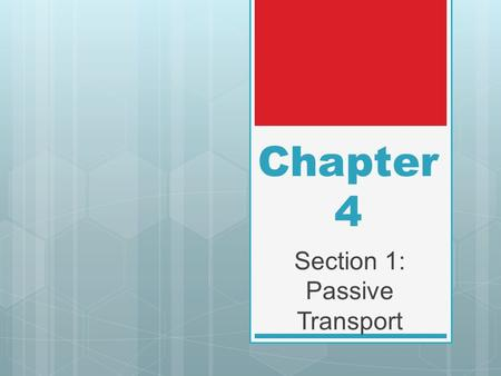 Section 1: Passive Transport