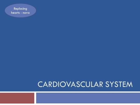 CARDIOVASCULAR SYSTEM Replacing hearts - nova. Cardiovascular System Functions  The cardiovascular system allows exchange of oxygen and carbon dioxide.