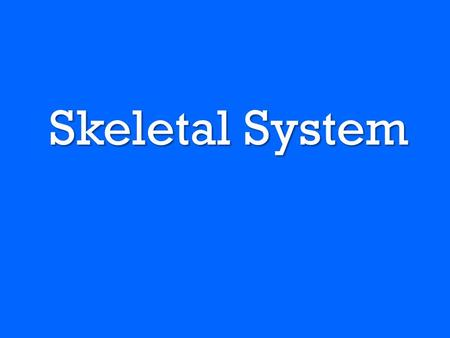 Skeletal System. Functions of the Skeletal System –Provide support –Protect internal organs –Allows your body to move –Stores and produced materials.