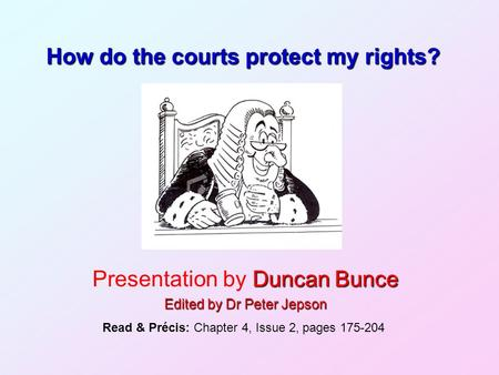 How do the courts protect my rights?