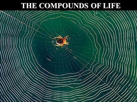 THE COMPOUNDS OF LIFE.