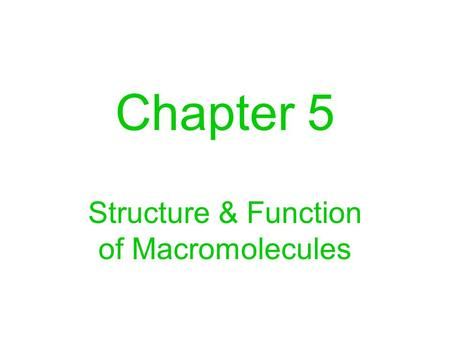 Chapter 5 Structure & Function of Macromolecules.