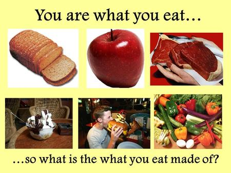 …so what is the what you eat made of?