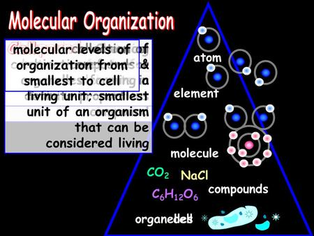Atom element molecule compounds cell NaCl CO 2 C 6 H 12 O 6 smallest unit of matter that retains its chemical properties a substance made up of only one.