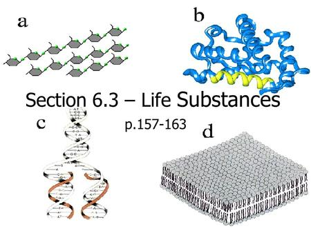 Section 6.3 – Life Substances