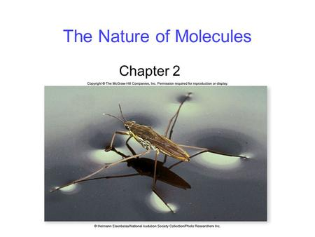 The Nature of Molecules Chapter 2. 2 Properties of Water Water is a key inorganic molecule, involved in biological processes for several reasons: 1. Water.