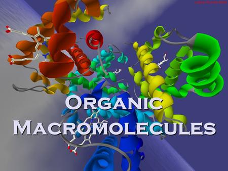 Organic Macromolecules. Chemical Reactions The rearrangement of atoms 6 CO 2 + 6 H 2 O  C 6 H 12 O 6 + 6 O 2 (Reactants) (Products)