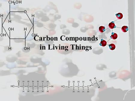 Carbon Compounds in Living Things