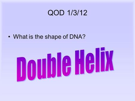 QOD 1/3/12 What is the shape of DNA?. DNA, RNA, and Protein Synthesis.