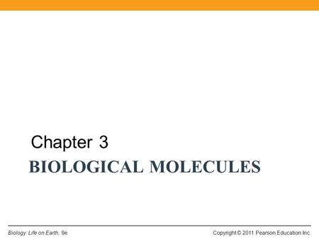 Chapter 3 Biological Molecules.