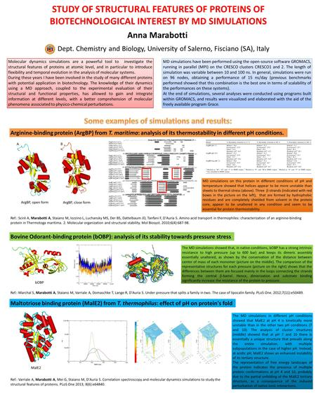 STUDY OF STRUCTURAL FEATURES OF PROTEINS OF BIOTECHNOLOGICAL INTEREST BY MD SIMULATIONS Anna Marabotti Dept. Chemistry and Biology, University of Salerno,