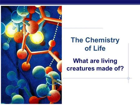 The Chemistry of Life What are living creatures made of?