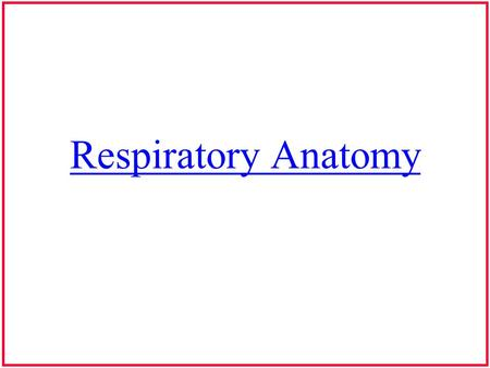 Respiratory Anatomy. Muscles of Expiration Unlike inspiration: expiration is an interaction between passive & active forces –active: rib cage and abdominal.