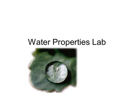 Water Properties Lab. Water is Polar Covalent Nonpolar Oxygen (even sharing of e-) Uneven sharing of e-