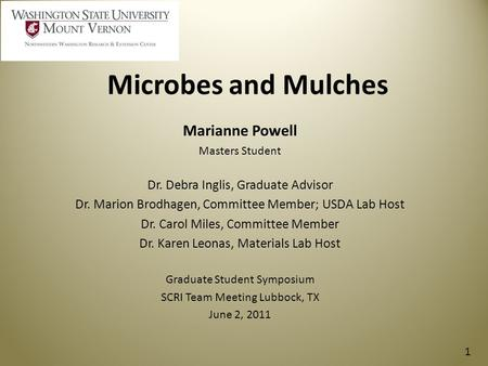Microbes and Mulches Marianne Powell Masters Student Dr. Debra Inglis, Graduate Advisor Dr. Marion Brodhagen, Committee Member; USDA Lab Host Dr. Carol.