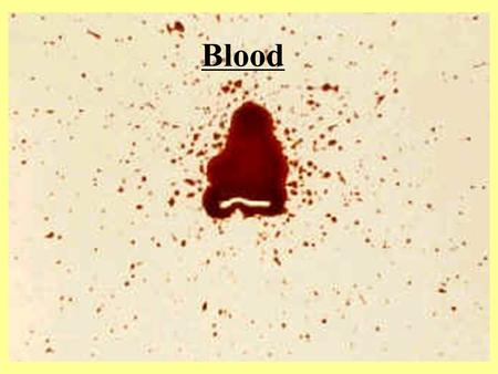 Blood Is it Blood? Obvious –Not always an easy determination Not Obvious –Stains on clothes, carpet, etc. Presumptive Tests – Blood indicated on… Confirmatory.