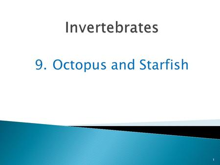 9.Octopus and Starfish 1. An octopus is a mollusk that has no shell at all 2 It looks as if it is all head and arms.