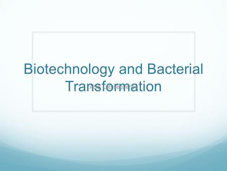 Biotechnology and Bacterial Transformation