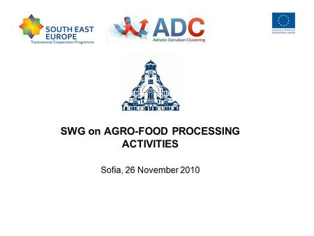 SWG on AGRO-FOOD PROCESSING ACTIVITIES Sofia, 26 November 2010.