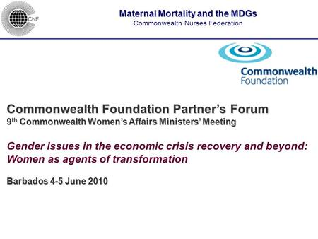 ____________________________________ Commonwealth Foundation Partner's Forum 9 th Commonwealth Women's Affairs Ministers' Meeting Gender issues in the.