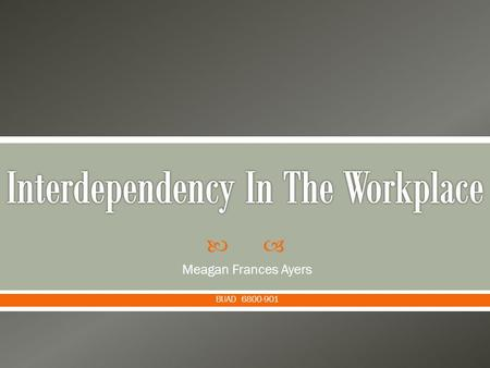  Meagan Frances Ayers BUAD 6800-901.  Accounting  Finance  Human Resources (HR)  Sales  Marketing  Operations Management  Management Information.