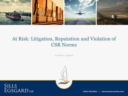 At Risk: Litigation, Reputation and Violation of CSR Norms Jennifer L. Egsgard.