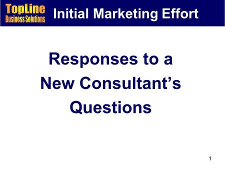1 Initial Marketing Effort Responses to a New Consultant's Questions.
