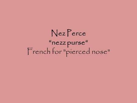 "Nez Perce ""nezz purse"" French for pierced nose."