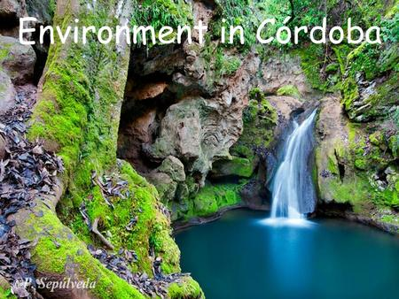 Environment in Córdoba. Environment means everything that surrounds a living or specially conditioned living circumstances of living things. It includes.